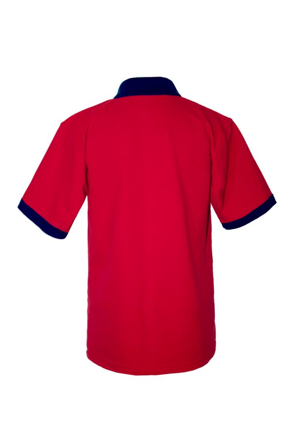 Хлопковая рубашка-поло на трех пуговицах с синей отделкой-697